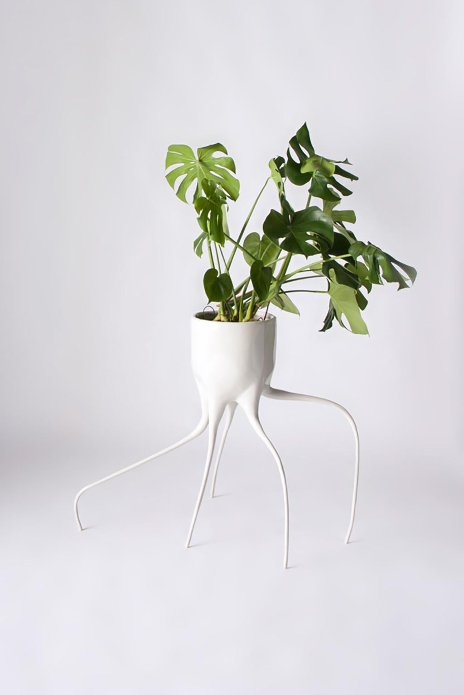 monstera plant pots dutch design daily. Black Bedroom Furniture Sets. Home Design Ideas