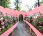 05_Studio Ossidiana_Paper gardens_Garden of flowers_Jacopo Raule©