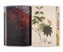 thumb-KH_Tree and Soil_05